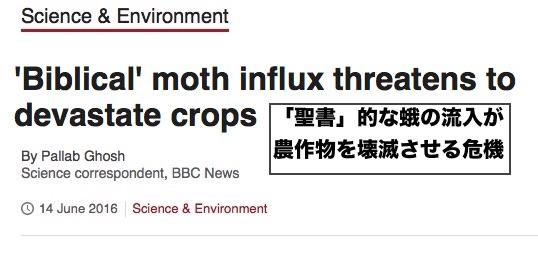 biblical-moth-influx