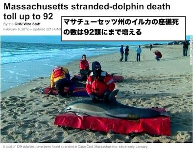 cnn-2012-02-06-01