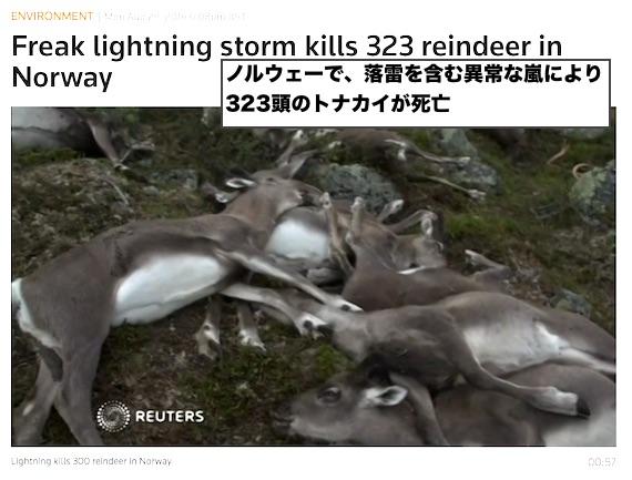 norway-reindeer-deaths