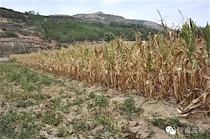 china-drought-2016b