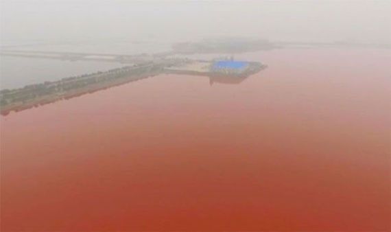 china-s-dead-sea-turns-blood-red