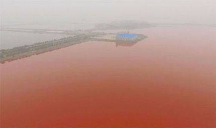china-s-dead-sea-turns-blood-red2