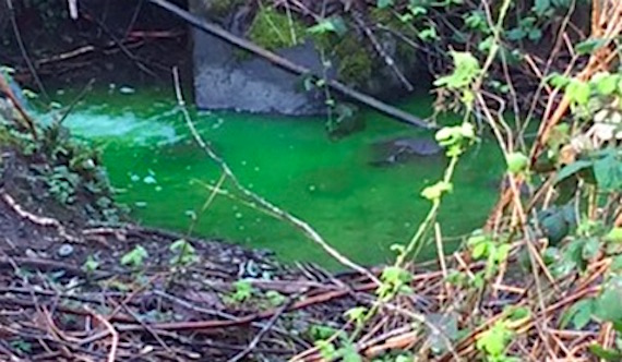 green-water