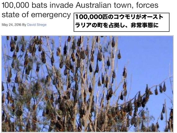 10man-bats-invade