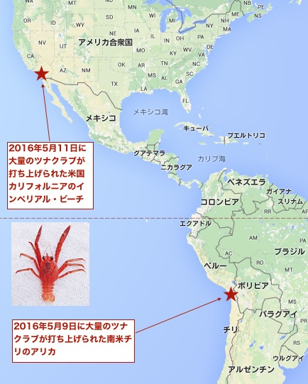tuna-crab-arica-and-california