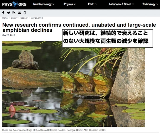 amphibian-declines