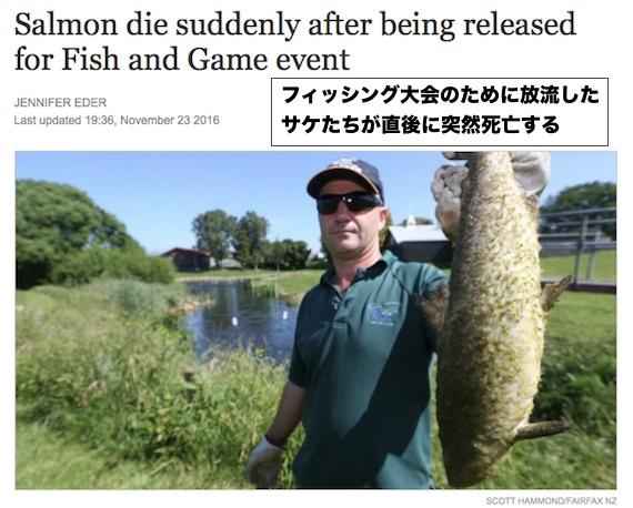 salmons-die-newzealand