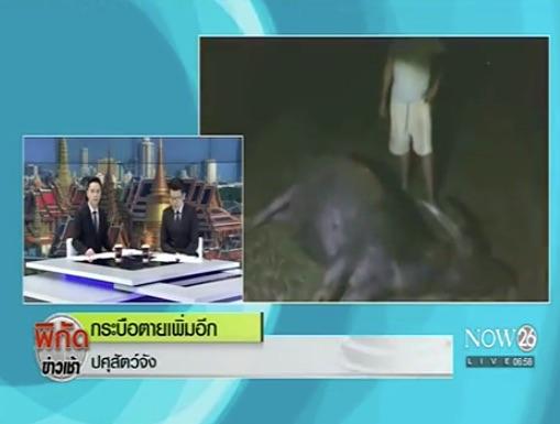 thai-tv-11